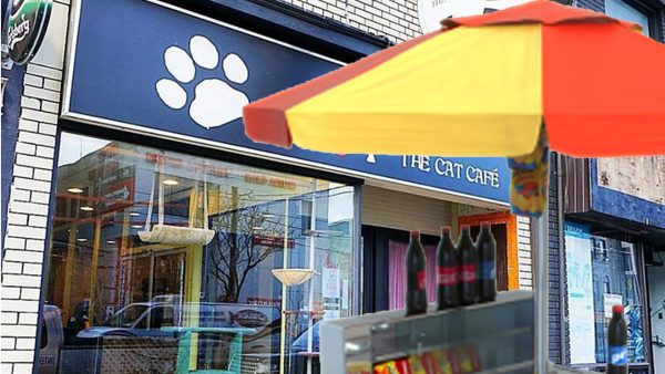 Suspicious Hot Dog Stand Appears in Front of Local Cat Cafe